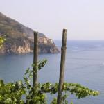 Die Wanderwege der Cinque Terre führen an der Riviera entlang