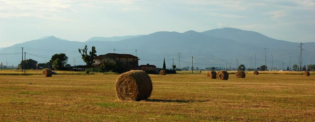 Der agriturismo, der Urlaub auf dem Land, ist in der Toskana sehr beliebt.